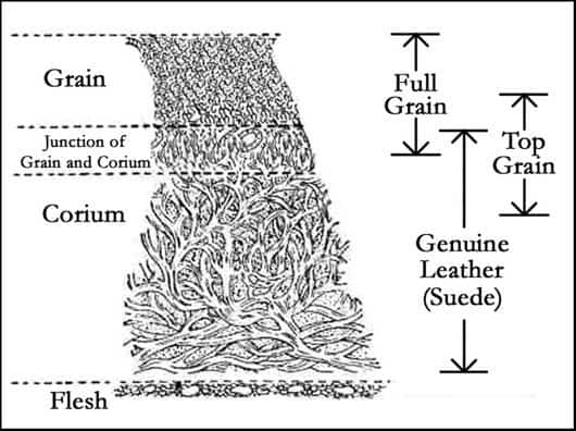 Grades of Leather
